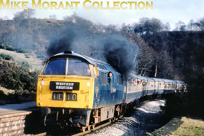 RPPR: Western Requiem Relief 13/2/77 This was the second most viewed image on my erstwhile Fotopic site and deservedly so. BR 'Western' class 52 Bo-Bo diesel hydraulic no. D1010 Western Campaigner storms through Quakers Yard on 13/2/77.