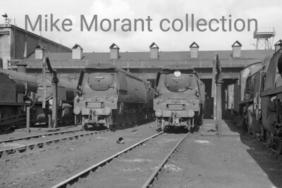 A pair of Bulleid original light pacifics at Exmouth Junction shed on 31/7/60. On the left is West Country no. 34033 Chard which would move to Eastleigh mpd in September 1964 followed by withdrawal in December 1965 whilst on the right is Battle of Britain no. 34075 264 Squadron which would remain an EJ engine until withdrawal in April 1964. [Mike Morant collection]