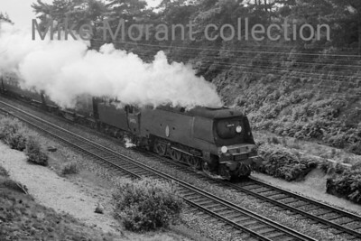 Bulleid original light pacific no. 34076 41 Squadron in charge of a Waterloo - Weymouth train near Beaulieu Road on 15/7/65. Note that the third rail is already evident here some two years before the end of steam on this line. [Mike Morant collection]