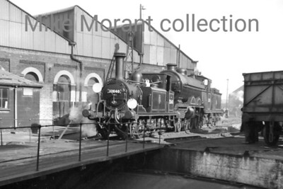 Former LBSCR Stroudley A1X 'Terrier' 0-6-0T no. 32640 and the last Marsh H2 Atlantic no. 32424 Beachy Head in bright sunshine at Brighton shed on 13/4/58. April 13th 1958 was the date of the 'Sussex Coast Ltd', significant for being the last run of the last British Atlantic, 32424 'Beachy Head', from Victoria to Newhaven but she worked as a light engine onwards to Brighton. [Mike Morant collection]
