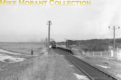 Stroudley Terrier 0-6-0T no. 32650 at the desolate looking and rarely photographed North Hayling Halt on the Hayling Island branch. This shot follows on from the shot of the bridge and features the same train but there's no sign of that GSD! [Mike Morant collection]