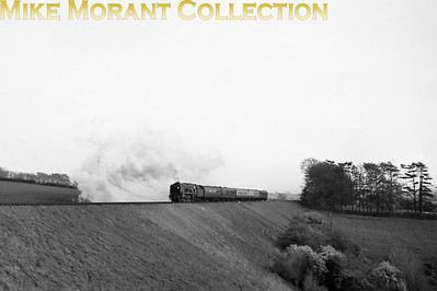 An unidentified rebuilt Bulleid light pacific working hard on the final part of the climb to Bincombe summit. The summit is in the middle of the tunnel under the Ridgeway and there then follows an easy drift down the bank to Dorchester South Junction. [Mike Morant collection]