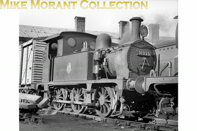 SECR Wainwright designed 'P' class 0-6-0T no. 31325 at Brighton shed on 16/10/55. No. 31325 was the final member of this small class of eight engines and was built at Ashford works in 1910. Withdrawal would come in March 1960 whilst allocated to Brighton mpd.