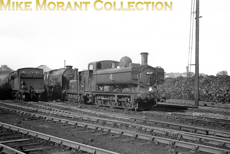 "I periodically have a moan about the alleged data supplied with purchased material and this is a good example of why. ""9617 Eastleigh 1963"" it said on the sleeve and at least the location was correct. The featured engine is Collett 5700 class 0-6-0 pannier tank no. 9677 with an 87J Goodwick (Fishguard) shed plate whilst the Maunsell Schools class 4-4-0 in the background is 30918 which was withdrawn in October 1961 and cut up in the November which probably settles the date but I was puzzled as to why 9677 was there as it was never a Southern engine. John Lewis has helped out with this one: ""GWR 9677 was sent from Goodwick to Eastleigh and it arrived there on 12 Oct 1961. It returned to Goodwick on 11 Niovember 1961 having had a heavy/intermediate overhaul, according to the WR Loco allocations Register."" [Mike Morant collection]"