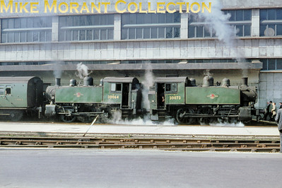 RCTS: The Solent Rail Tour 20/3/66. Back-to-back green liveried USA 0-6-0T's nos. 30064 and 30073 at Southampton (Ocean Terminal).