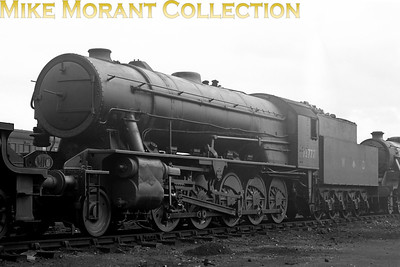An Austerity WD 2-10-0 with WD number and markings 73777 was built in 1945 but didn't enter BR service until 1951 receiving the number 90753 but became a relatively early withdrawal in 1961 from carstairs mpd where she had spent her entire BR career. 73777 moved from storage at Longmoor to Carstairs in February 1949 which could be where this shot was taken whilst the BR number  wouldn't be applied until 2/51. I did wonder, however, what the significance is of the oval disc above the buffer beam which states either 'MIO' or 'M10' and can find no mention of such in Rowledge's book on WD's but Matt Little notes that Scottish freight locos used to have a similar disc that denoted the working ID of the train being hauled.