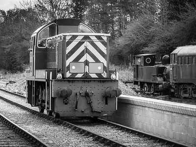 Class 14 (D9513) NCB No.38 at Bolton Abbey