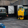Diesels at Haworth Yard