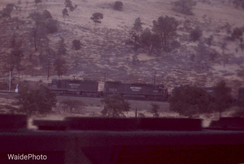 Walong, California 1979