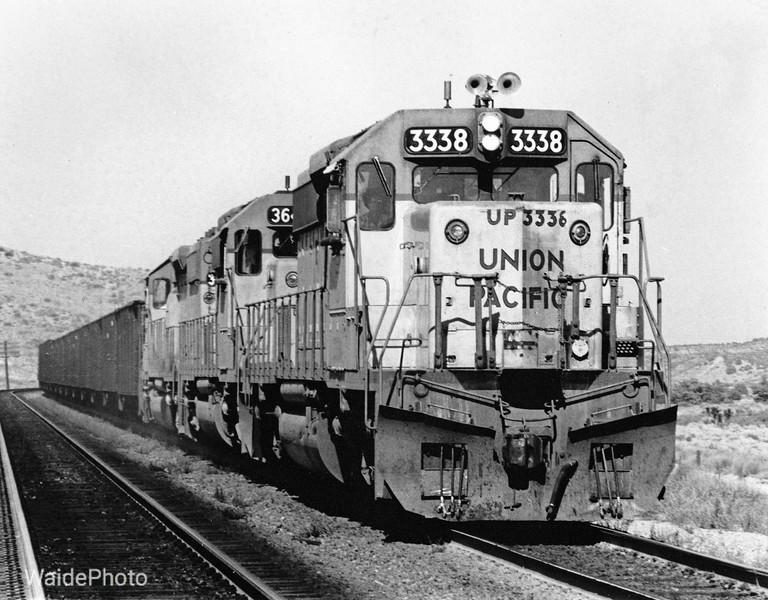 Martinez Spur, California 1979