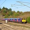 313061 - Hadley Wood