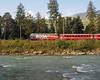 Alongside the river Ge 4/4 III 646 returns on the 09:58 Chur to St Moritz
