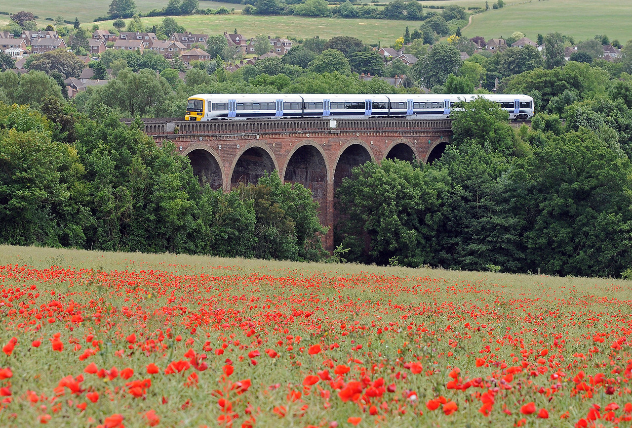 Another picture of Eynsford Viaduct with a Networker on a Sevenoaks train slowing for the Eynsford stop. The poppies have spread through this field of oil seed rape.