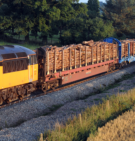 Two sorts of log carriers, these converted from the old Rover cube wagons originally used for transporting steel pressings from Swindon to Longbridge and...