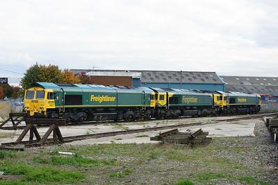 Class 66 No 66557/66504/66559 at Midland Road Depot on 14 October 2015