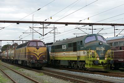 Class MX No 1019 and Class 1800 No 1807 at Padborg on 7 August 2016