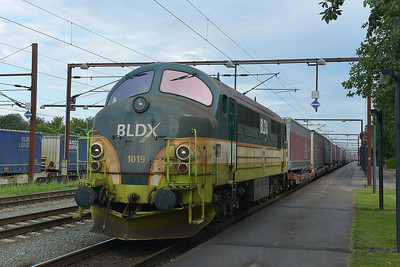 Class MX No 1019 at Padborg on 7 August 2016
