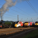 What a sight....A generation of East coast traction gathers at Beningborough for the 4 Train event .23/04/2017.