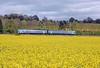 April 26th, Abergavenny / Y Fenni