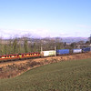 90028 and 90037 are seen near Oxenholme with the Mossend - Daventry Malcolm's, 20/2/2018.