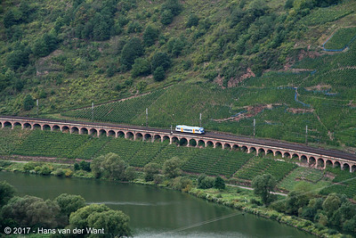 "A Moselweinbahn ""RegioShuttle"" along the Mosel river (8 sept 2017)."