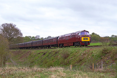 1062 'Western Courier' passes Rifle Range Halt with the 13.30 Kidderminster to Bridgnorth. Sunday 5th May 2013.