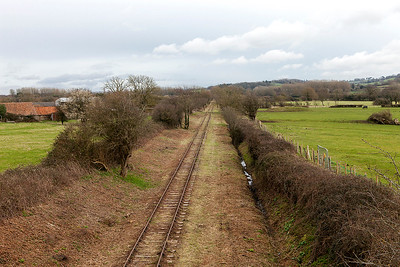 Portishead branch at Sheepway looking towards Portbury showing the clearance work. Monday 6th March 2016.