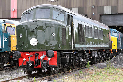 Class 44 D4 'Great Gable' stands outside the shed at Swanwick Junction, MRC. 20/05/2011