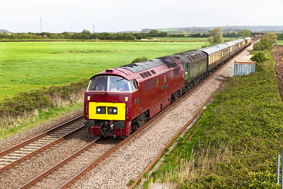 D1015 'Western Champion' with 47773 (D1755) DIT passes Brean Road, Lympsham with 1Z15 06.25 Tyseley to Kingswear charter. Saturday 26th April 2014.