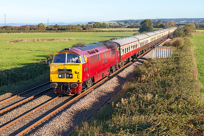 D1015 'Western Champion' running as D1071 'Western Renown' passes Brean Road, Lympsham heading Pathfinder Tours' 1Z59 05.07 Tame Bridge Parkway to Penzance. Saturday 17th September 2016.
