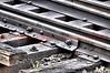 Narrow gauge railroad tracks.