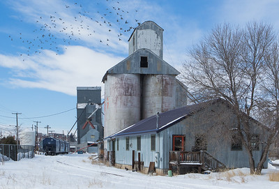 Grain elevator, Bozeman, MT.