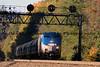 100916-Amtrak42_Lilly_1151
