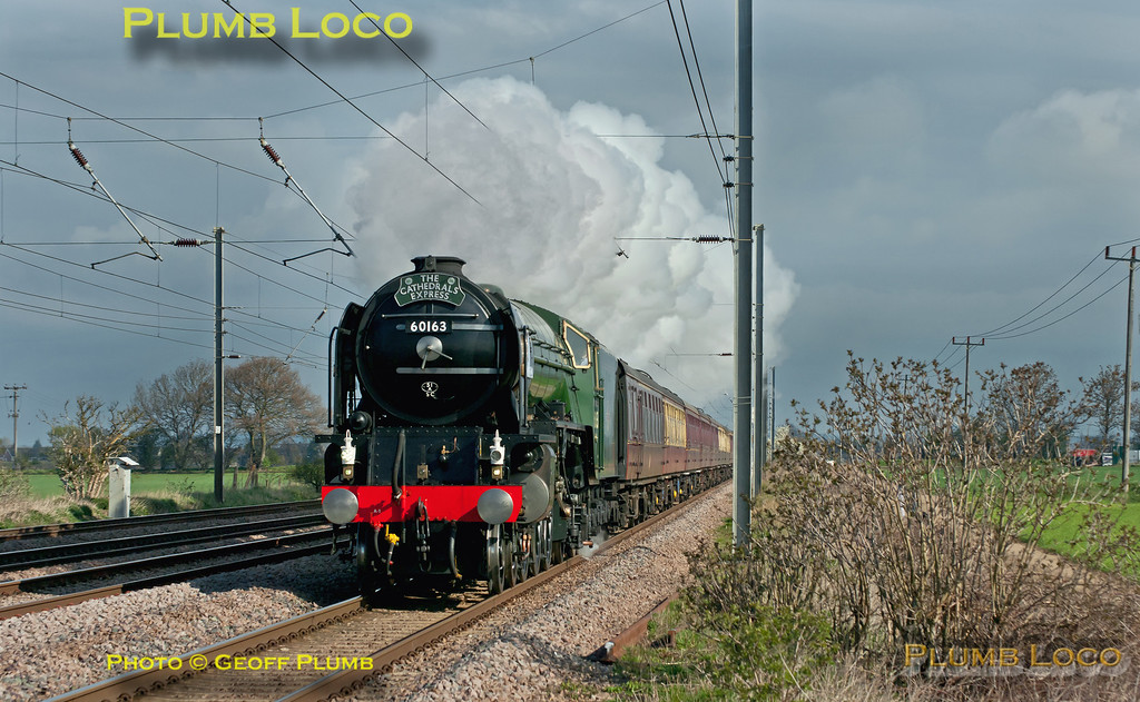 """In what turned out to be the best light of the day, A1 4-6-2 No. 60163 """"Tornado"""" forges south along the ECML with 1Z56, """"The Cathedrals Express"""", 08:54 from Peterborough to Salisbury and return. The train is approaching the foot-crossing at Jiggs Lane, Langford, at 09:59, around twenty minutes late on Wednesday 4th April 2012. Digital Image No. GMPI11509."""