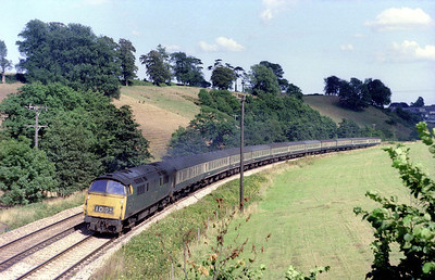D1005 'Western Venturer' taking Rattery Bank in its stride with an express for the West of England. The field to the right is now covered in housing, a part of outer Totnes! 21/7/76.