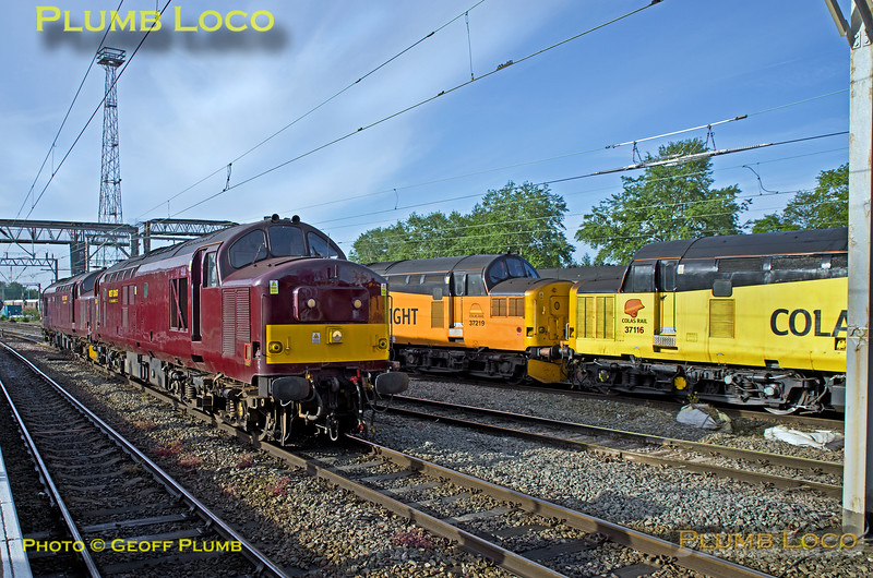 WCRC 37s & Colas 37s, Crewe, 12th May 2018