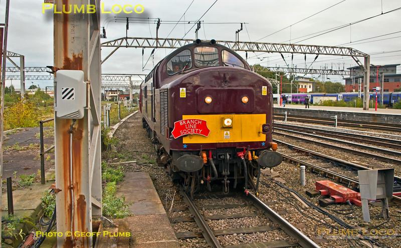 """37668, BLS """"Cliffe Hopper"""" ECS, Crewe Station Platform 12, 5Z39, 7th October 2016"""