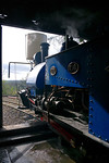 """Former Darjeeling Himalayan Railway """"B"""" class 0-4-0STT No. 19 is raising steam in the shed during the first steaming day of the year at Adrian Shooter's private Beeches Light Railway, 10:19, Friday 2nd April 2010. Digital Image No. GMPI4800."""