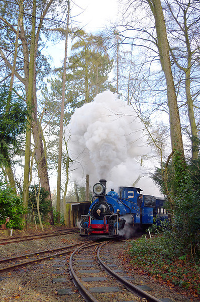 Getting towards the end of the afternoon's running and No. 19 is blasting its way through the woods alongside the coal siding on the gradient up to the paddock top. 16:04, Friday 2nd April 2010. Digital Image No. GMPI5052.