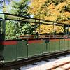 175 - Blenheim Park Railway 25.08.18  Kev Adlam