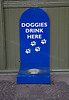 Pooch Friendly Station - Bo'ness & Kinneil Railway - 8 July 2012