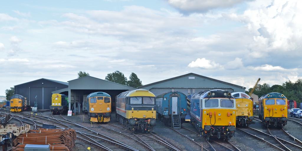 A proper diesel shed .<br /> 37025, 20002 , 26038 , 47643 , 50017 , 55022 ( 003 or 007 ) & 50007.