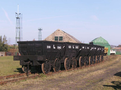 A fine rake of chaldron wagons