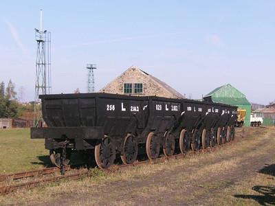 A fine rake of chaldron wagons