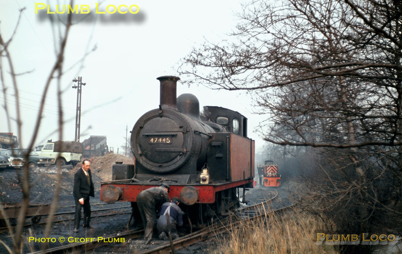 47445, British Oak, March 1969