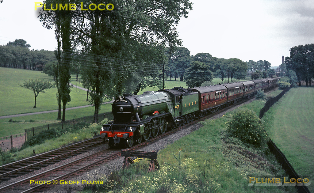 "Preserved A3 Class 4-6-2 No. 4472 ""Flying Scotsman"" (at that time owned by Alan Pegler) is in charge of the ""RCTS East Midlander No. 8"" railtour from Nottingham to Eastleigh and Swindon Works. It is seen passing through Gladstone Park near Dudding Hill, on the line from Cricklewood to Acton Wells Junction. Saturday 29th May 1965. Slide No. 1341."