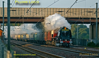 """Stanier LMS """"Duchess"""" 4-6-2 No. 6233 """"Duchess of Sutherland"""" is in full cry on the East Coast Main Line with """"The White Rose"""" (though it is carrying the """"Royal Scot"""" headboard at this stage) from King's Cross to Scarborough and return to Peterborough. It is almost on time at 07:14, just as the sun was rising. Saturday 9th September 2006. Digital Image No. IMGP2081."""