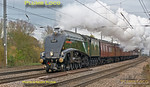 "60009 ""Union of South Africa"", Arlesey, 1Z60, 23rd November 2013"