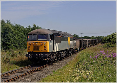 2013 07 17 56301 Potland Burn-Kellingley loaded box wagons approaching Linton Lane.