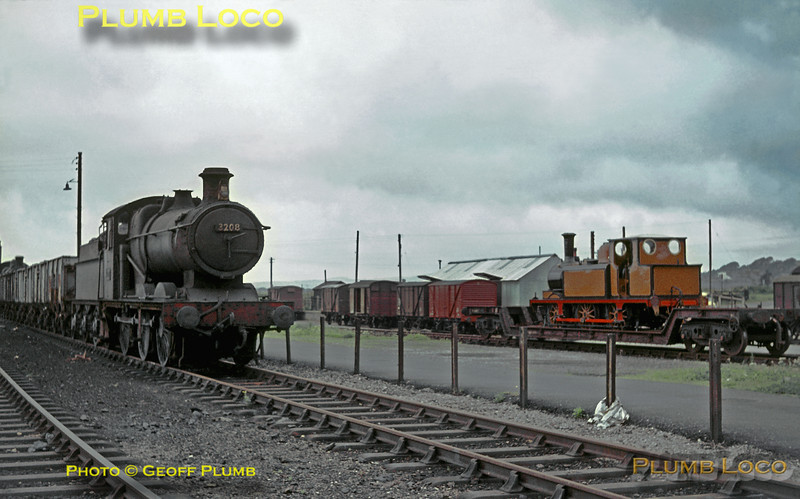 "Unlikely neighbours at Pwllheli! Collett 2251 class 0-6-0 No. 3208 was a regular at Pwllheli shed at the time, but ex-LB&SCR ""Terrier"" 0-6-0T No. 32640 certainly wasn't! Cosmetically restored to a semblance of its original livery, the 0-6-0T had been purchased by Sir Billy Butlin to install at the Holiday Camp at Pen-y-Chain along with ex-LMS ""Princess Royal"" 4-6-2 No. 6203 ""Princess Margaret Rose"". The ""Terrier"" had recently arrived on a well wagon and is here berthed in the yard awaiting removal to its new home. Saturday 8th August 1964. Slide No. 946."